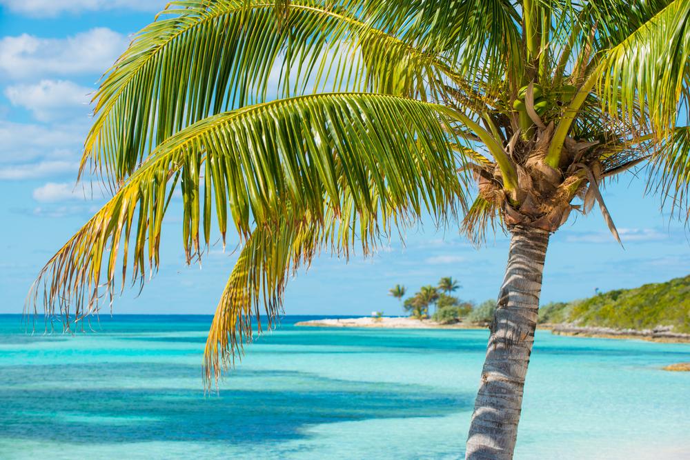 Bahamas cay charter